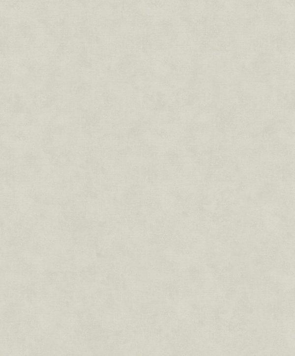 32422 - Shades