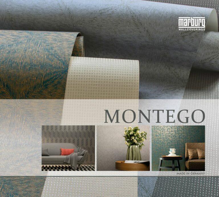 597 Montego